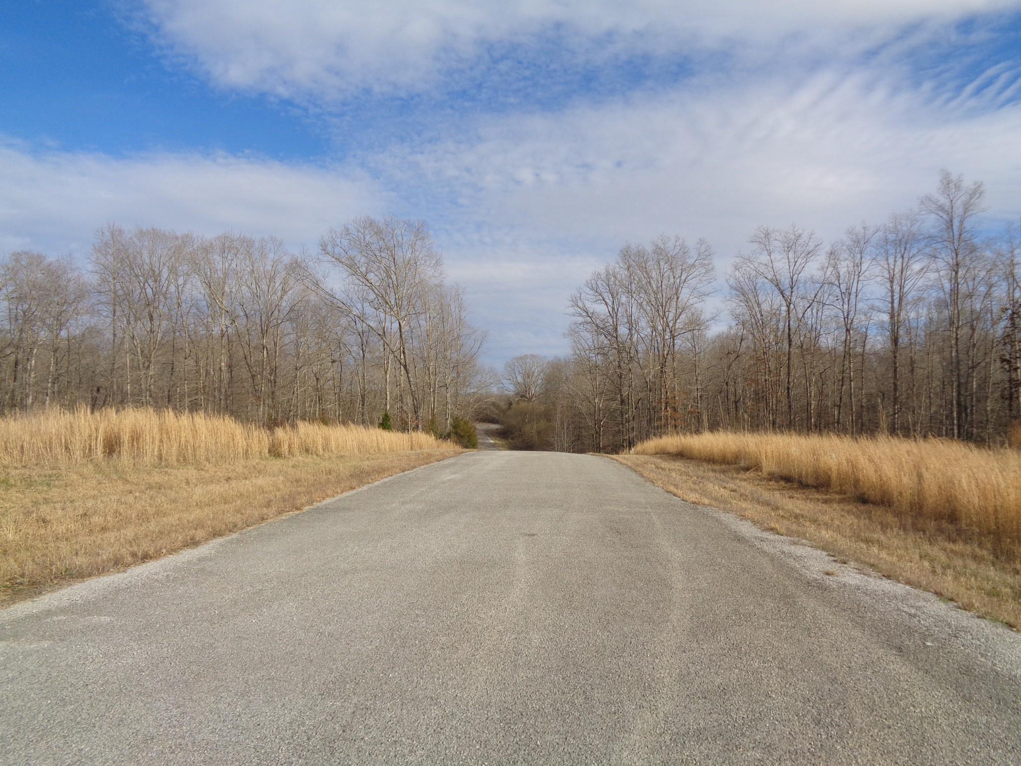 0 Eagle Loop Property Photo - Loretto, TN real estate listing