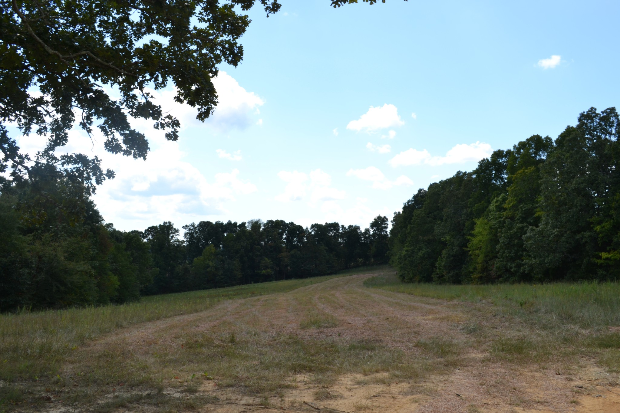 971 Robertson Rd - Tract 4, MC EWEN, TN 37101 - MC EWEN, TN real estate listing
