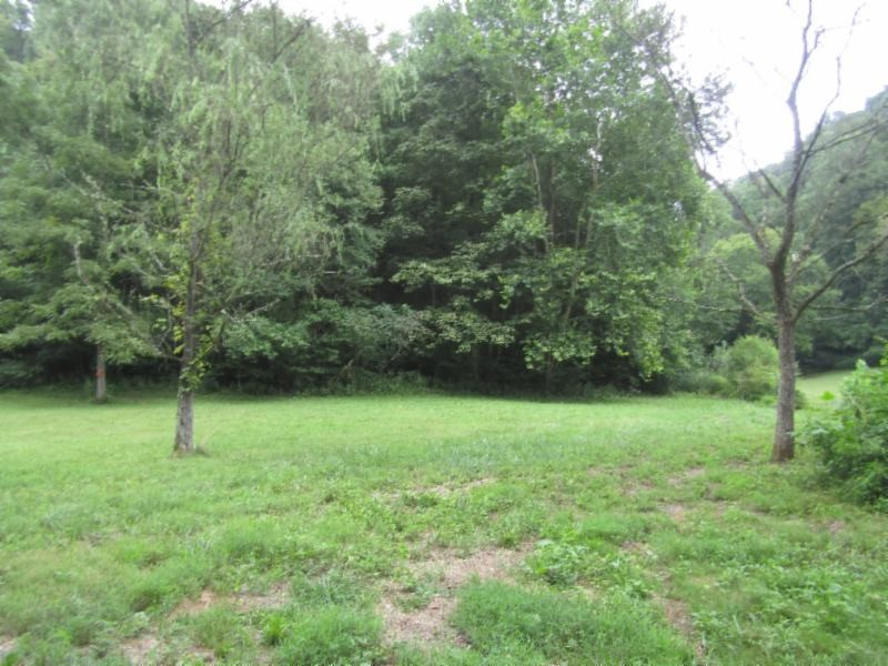 37 .33ac Modock Hollow Rd Property Photo - Celina, TN real estate listing