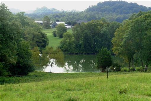 7 Three Forks Bridge Rd, Wartrace, TN 37183 - Wartrace, TN real estate listing