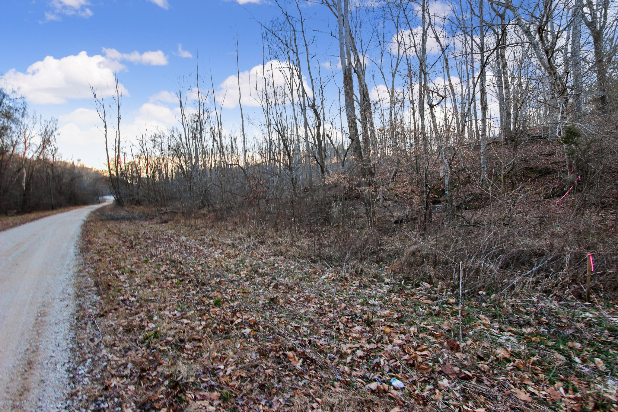 1694 Pennywinkle Branch Rd., Waverly, TN 37185 - Waverly, TN real estate listing