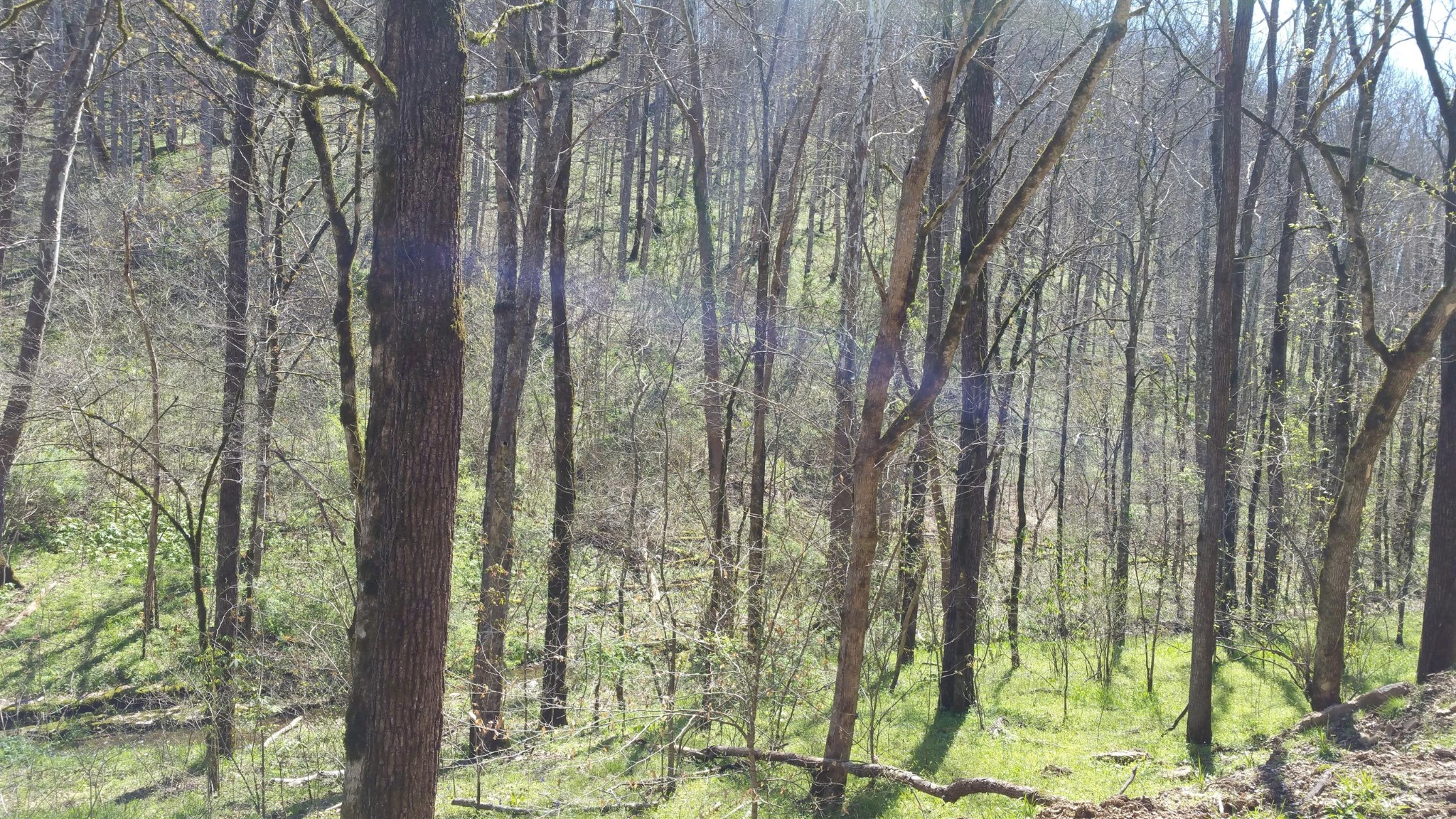 11370 Indian Creek Rd., Baxter, TN 38544 - Baxter, TN real estate listing