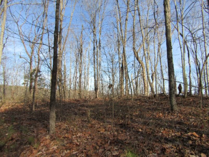 0 Buzzard Roost Road Property Photo - Jamestown, TN real estate listing