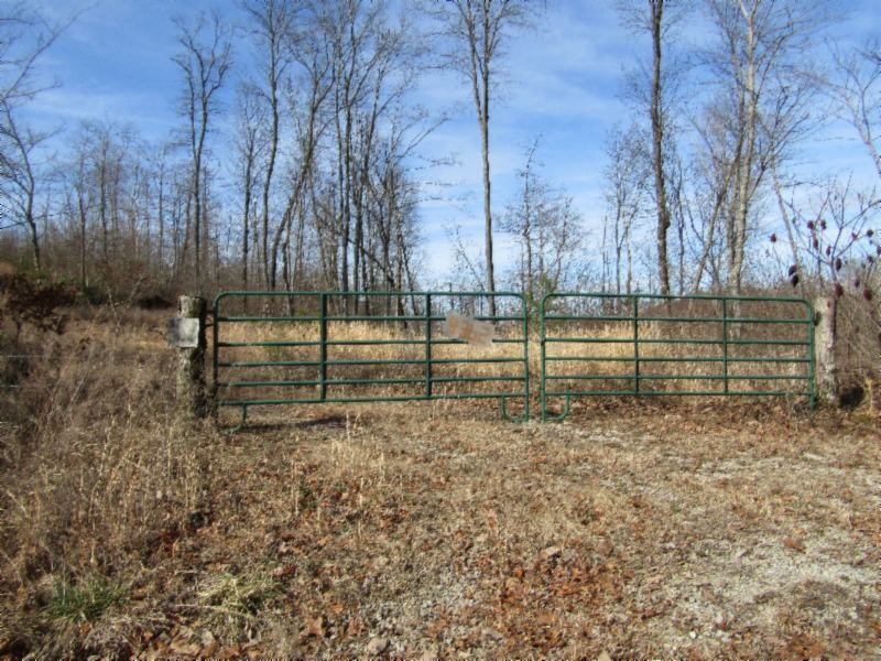 4362 Buzzard Roost Road Property Photo - Jamestown, TN real estate listing