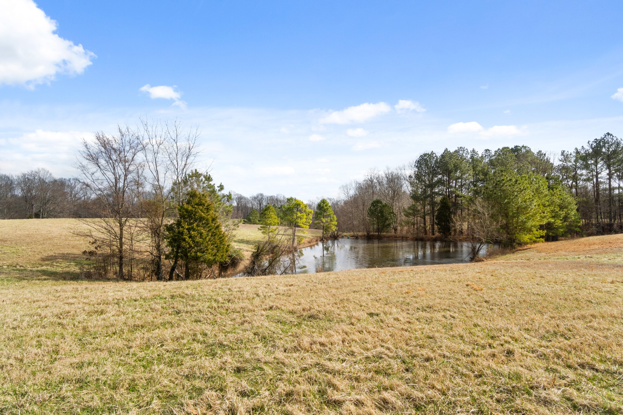 1760 Point Pleasant Rd Property Photo - Buchanan, TN real estate listing