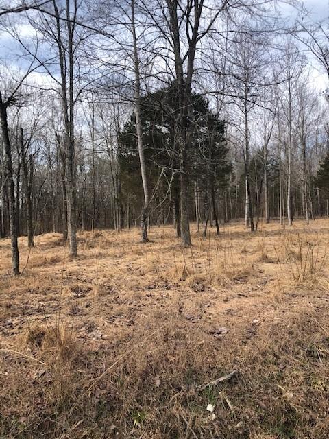 0 Ridge Ci, Joelton, TN 37080 - Joelton, TN real estate listing