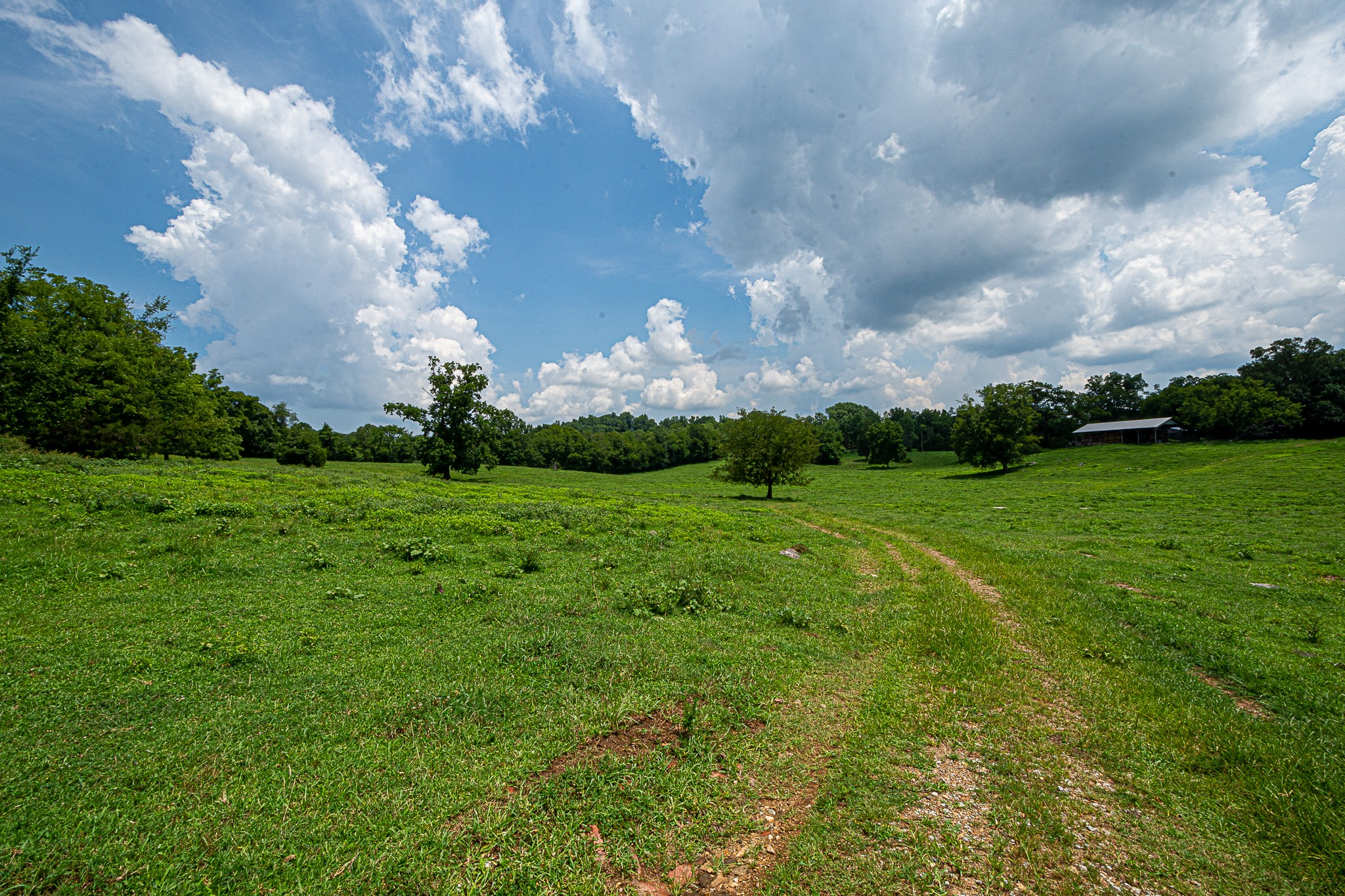 0 Short School Rd, Pulaski, TN 38478 - Pulaski, TN real estate listing