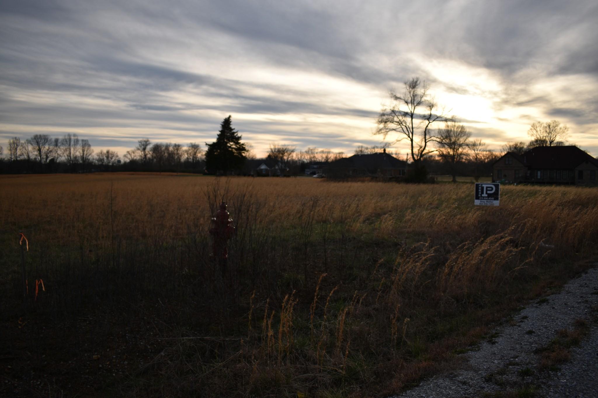 0 Black Oak Lane Lot 36 Property Photo