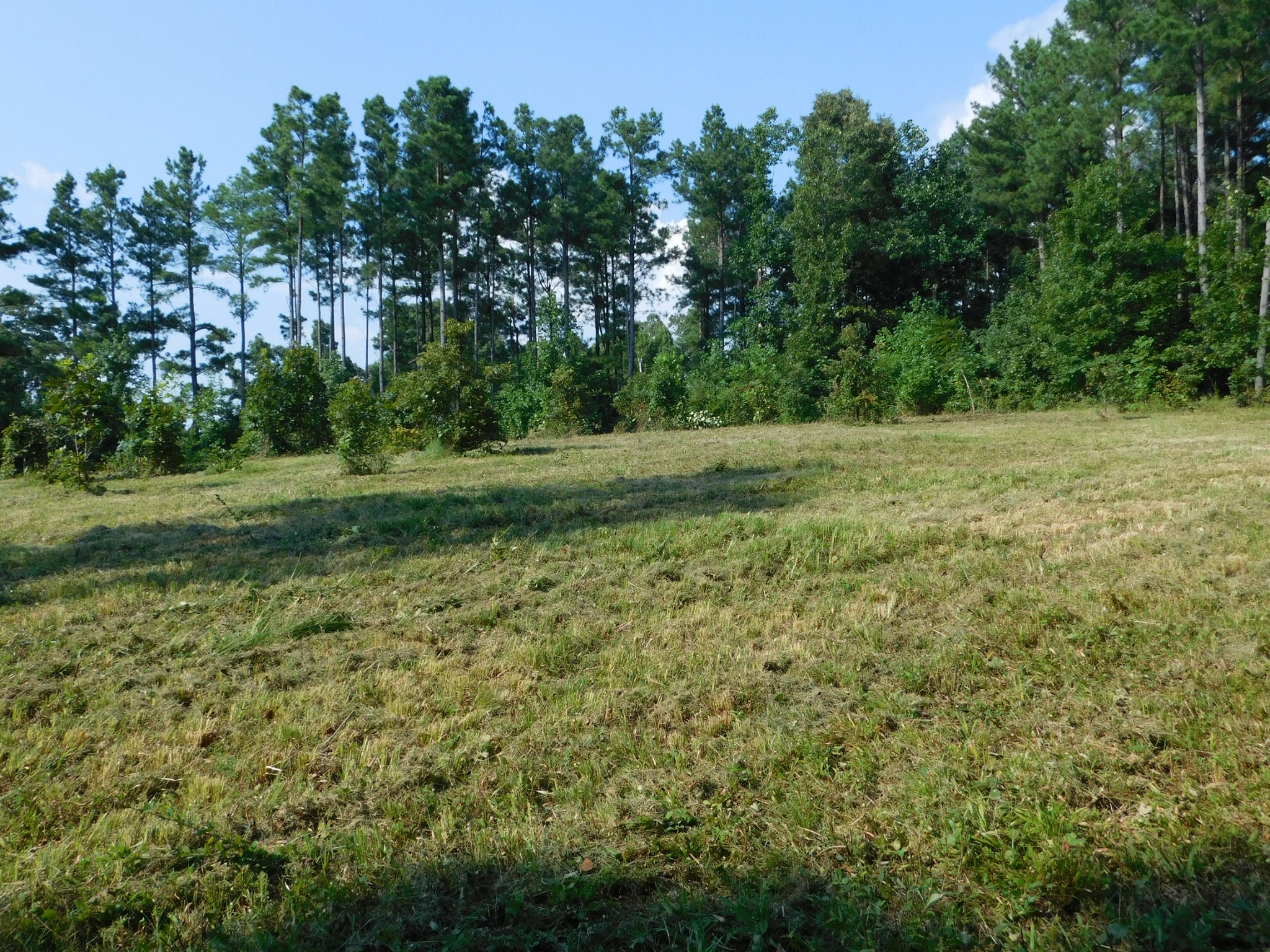 4430 Poplar Springs Rd. Property Photo - Indian Mound, TN real estate listing