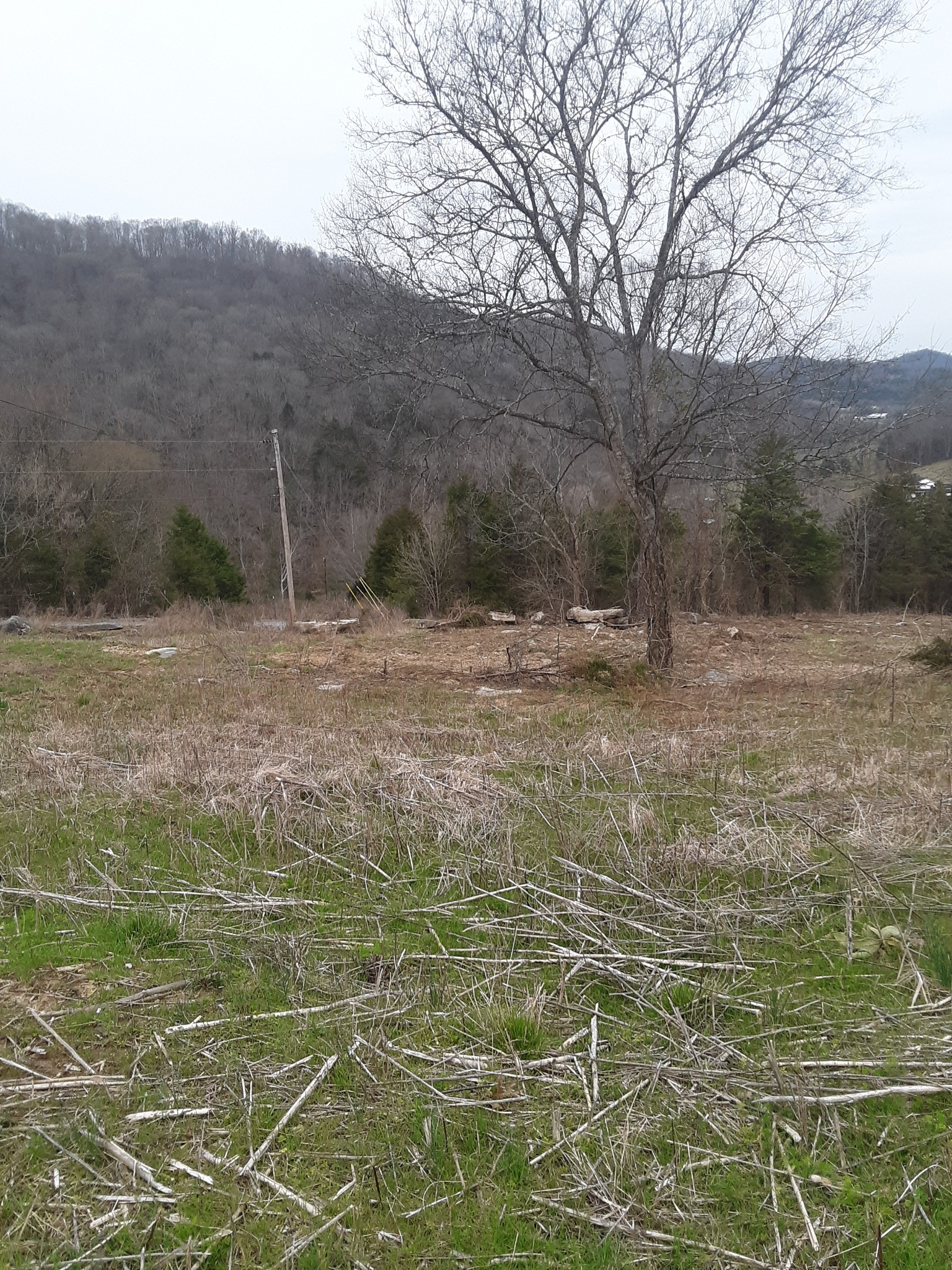 0 Adamson Branch Property Photo - Liberty, TN real estate listing