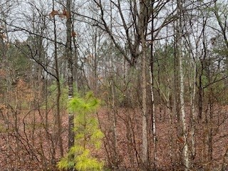 0 Oak Leaf Cir Lot 21 Property Photo