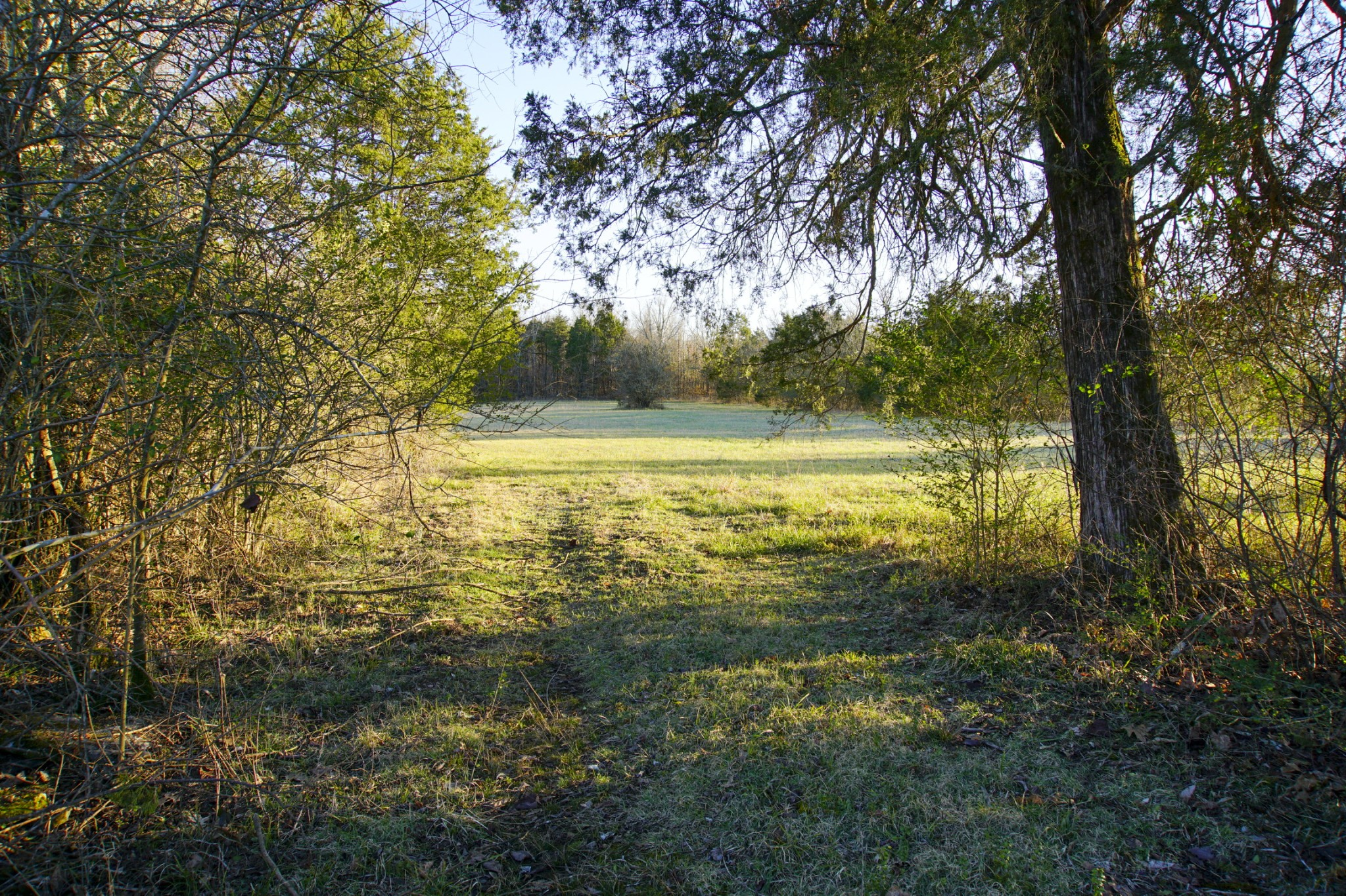 0 Kittrell Rd, Readyville, TN 37149 - Readyville, TN real estate listing