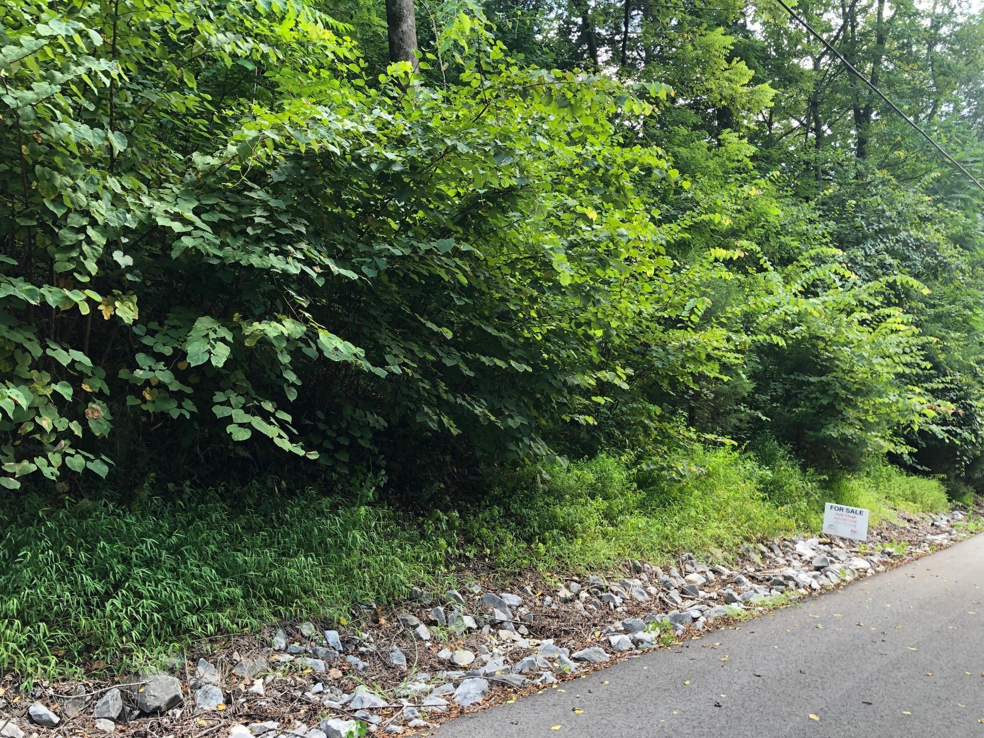125 Bay Dr, Lancaster, TN 38569 - Lancaster, TN real estate listing