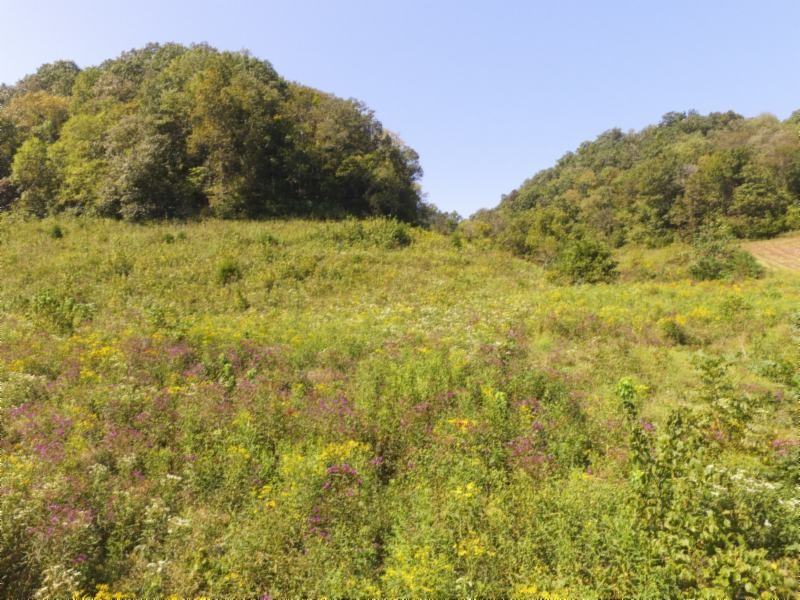 72 .68ac South Fork Road Property Photo - Whitleyville, TN real estate listing