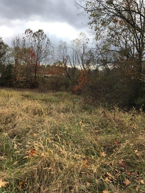 0 Cave Branch Rd Property Photo - Centerville, TN real estate listing