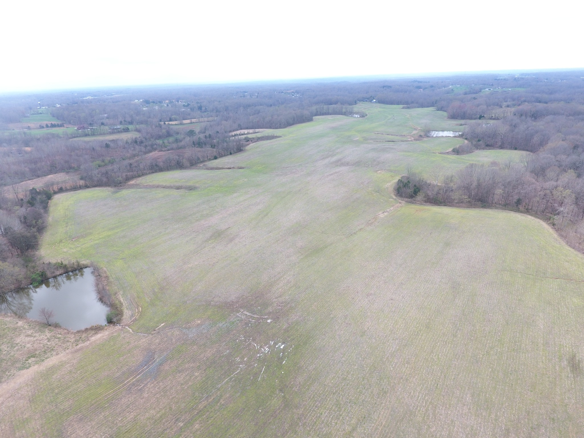 4131 Old Clarksville Pike Property Photo - Clarksville, TN real estate listing