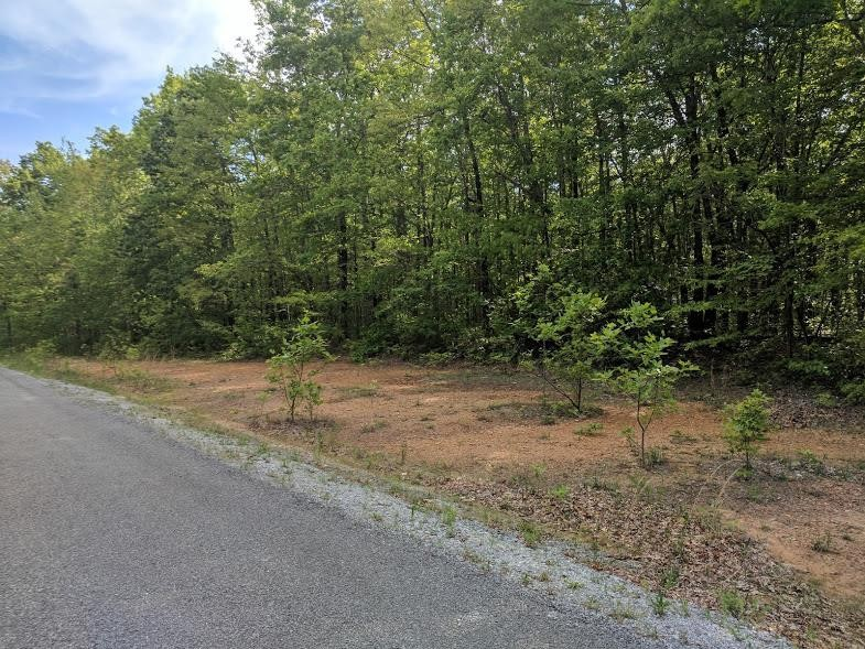 0 Deer Run Rd Lot 242 Property Photo - Altamont, TN real estate listing