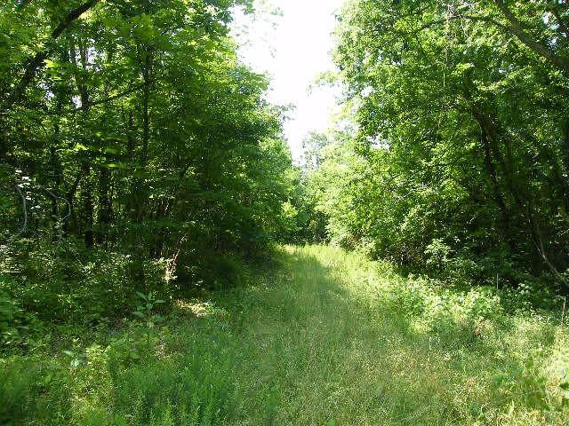 40 Grays Ln, Fayetteville, TN 37334 - Fayetteville, TN real estate listing