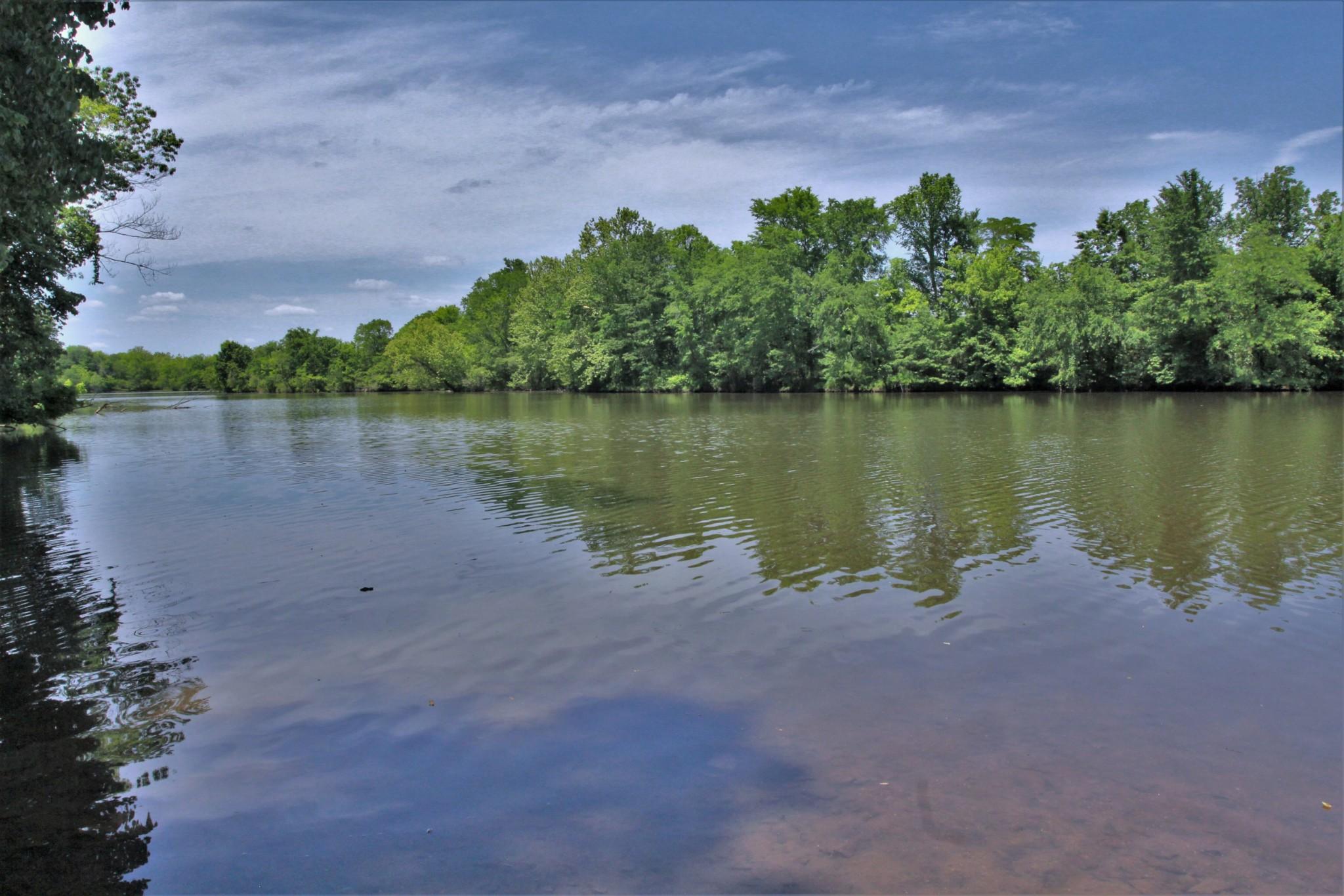 0 Cooksey Batson Rd. Property Photo - Charlotte, TN real estate listing