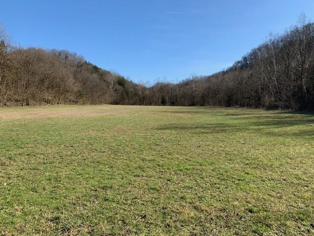 0 Baptist Ridge Rd Property Photo - Hilham, TN real estate listing