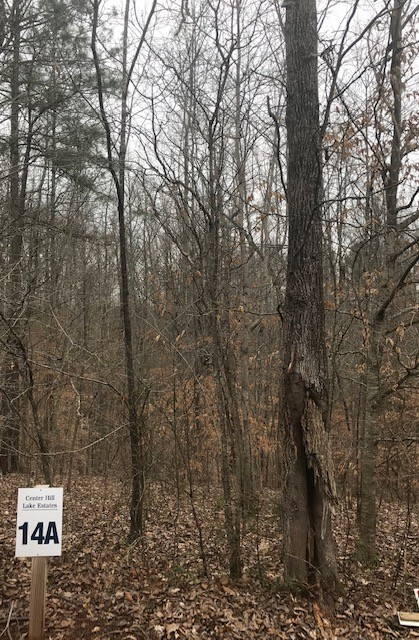 14A Allen Bend RD Property Photo - Smithville, TN real estate listing