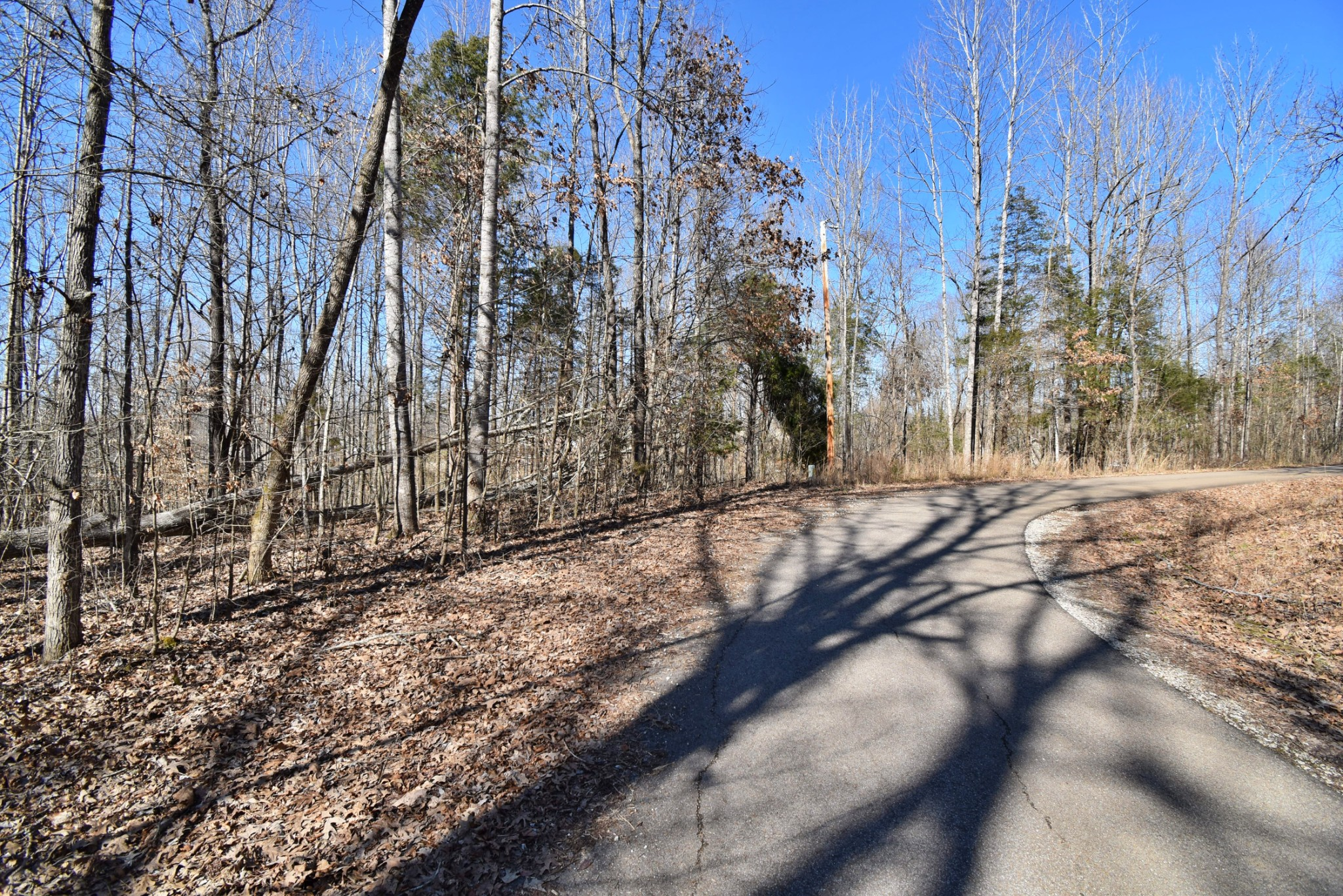 0 Featherfoot Parkway Loop Property Photo - Parsons, TN real estate listing