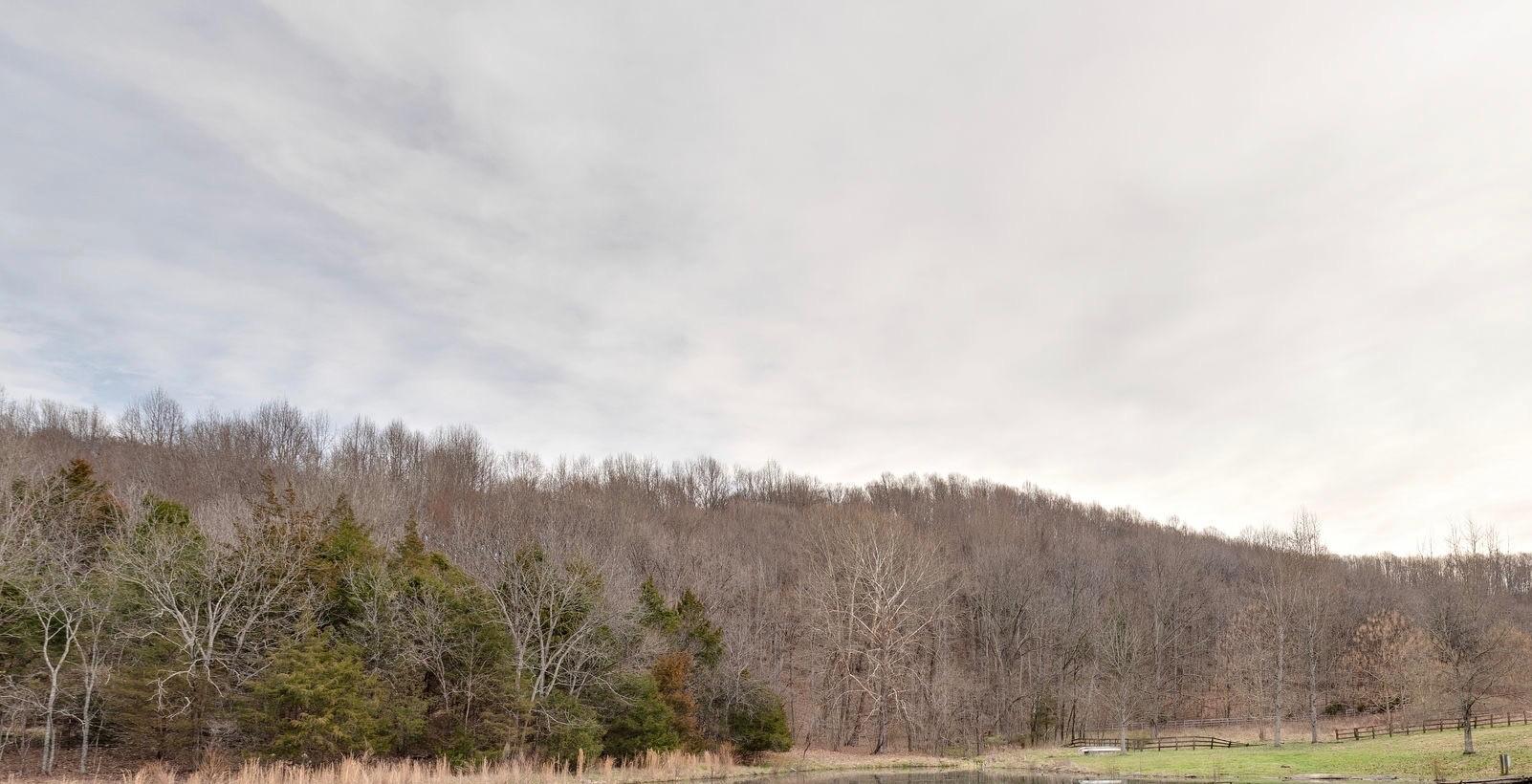 0 Delina Road Property Photo - Cornersville, TN real estate listing