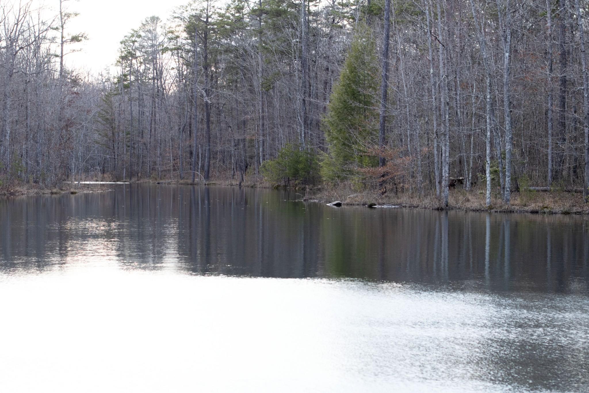 0 Boulder Lake Drive Property Photo - Coalmont, TN real estate listing