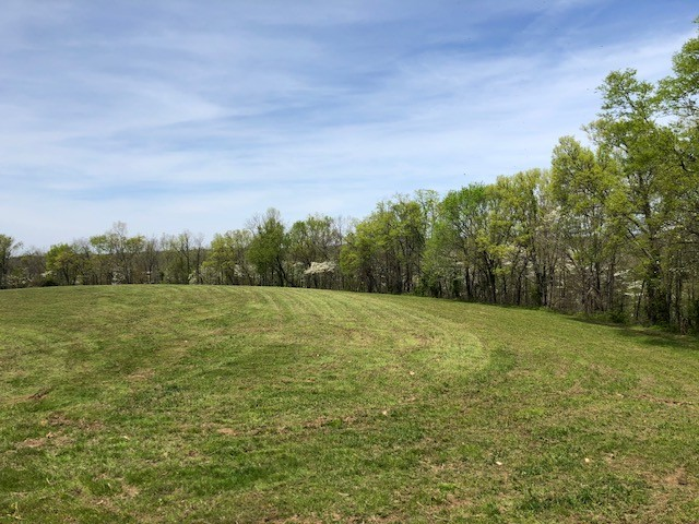 0 Jones Valley Road Property Photo - Williamsport, TN real estate listing