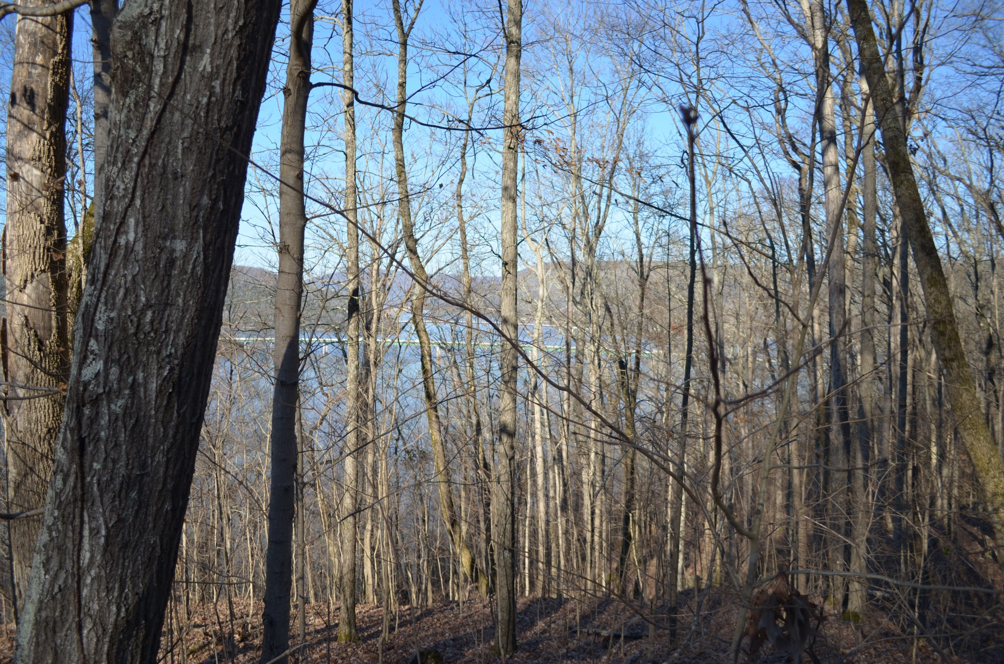 0 Browbend Dr. Lot 14 Property Photo - Guild, TN real estate listing