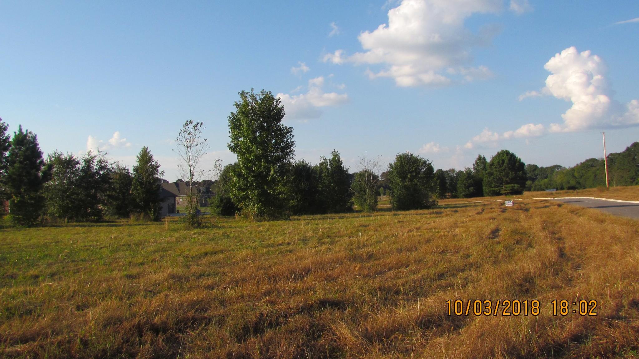 0 Aberdeen Ave., Hillsboro, TN 37342 - Hillsboro, TN real estate listing