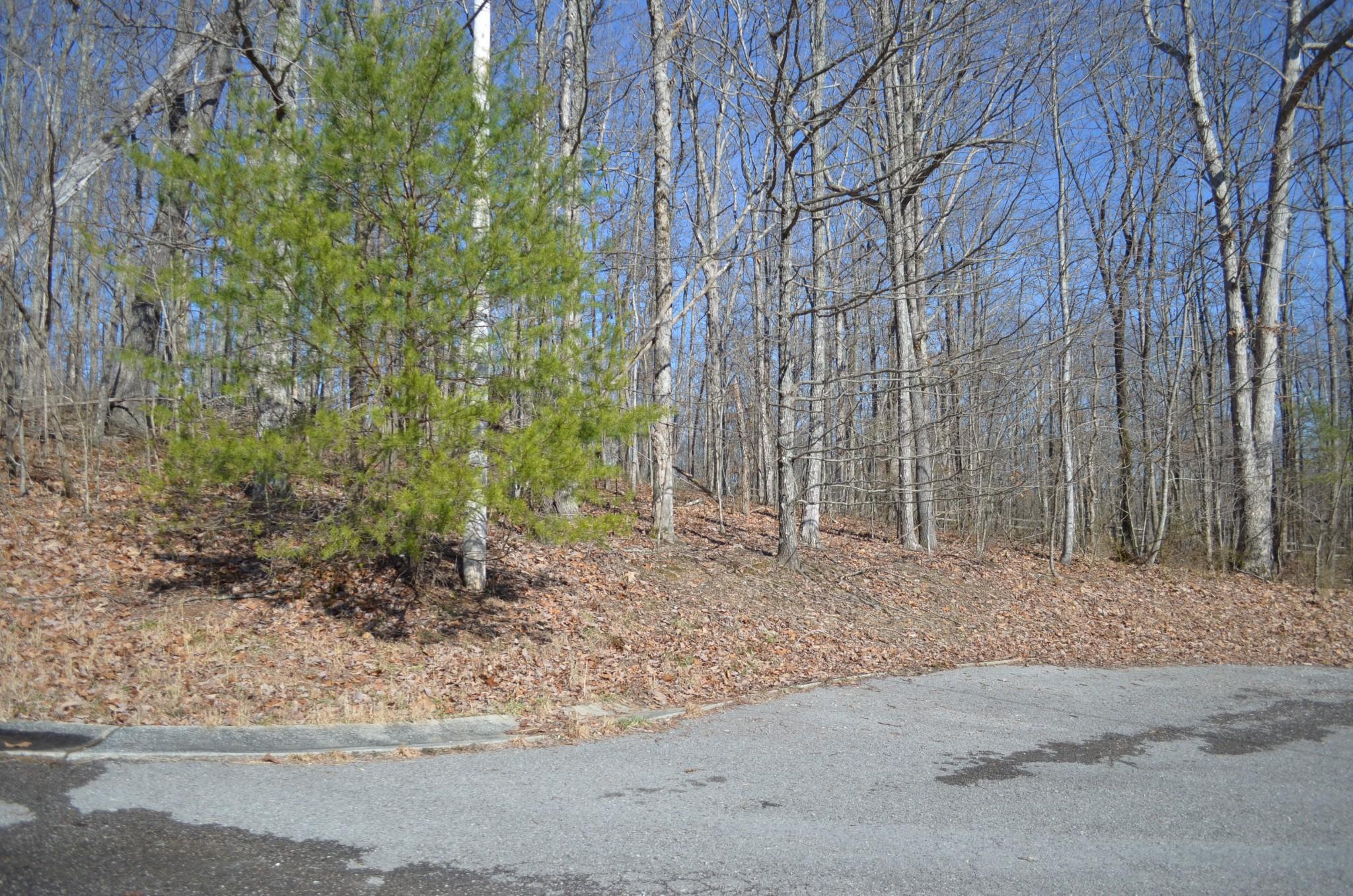 0 Bear Ct Lot 18 Property Photo