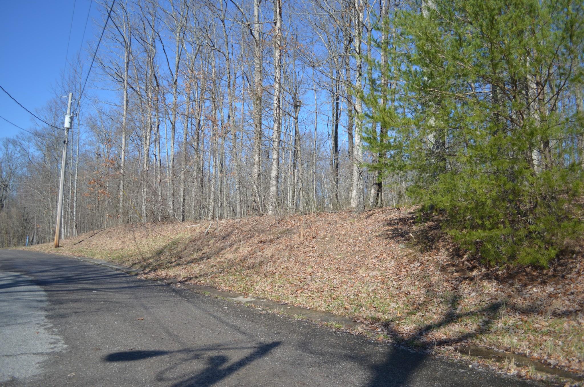 0 Bear Ct Lot 19 Property Photo - Monteagle, TN real estate listing