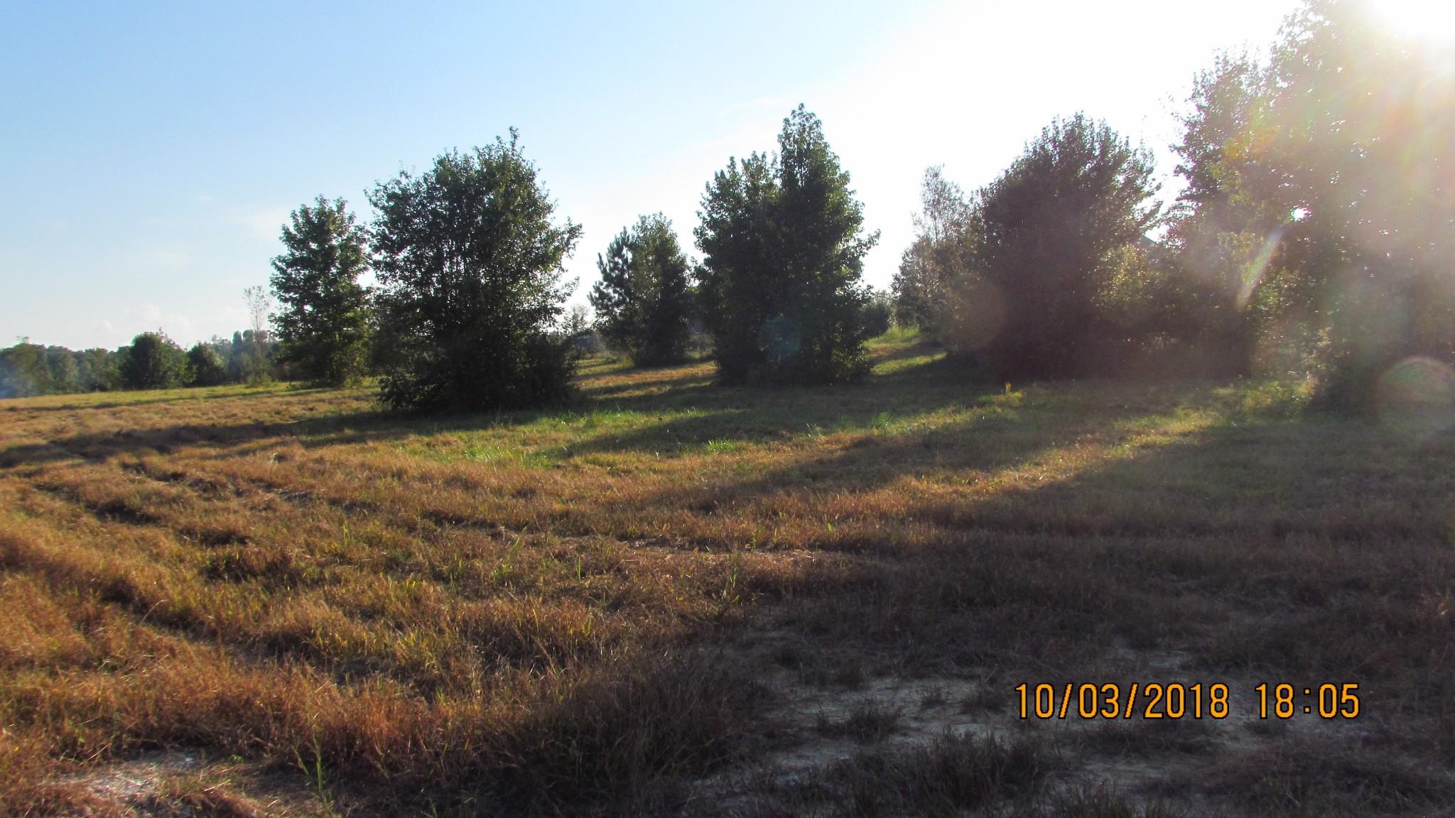 0 Aberdeen Ave Property Photo - Hillsboro, TN real estate listing