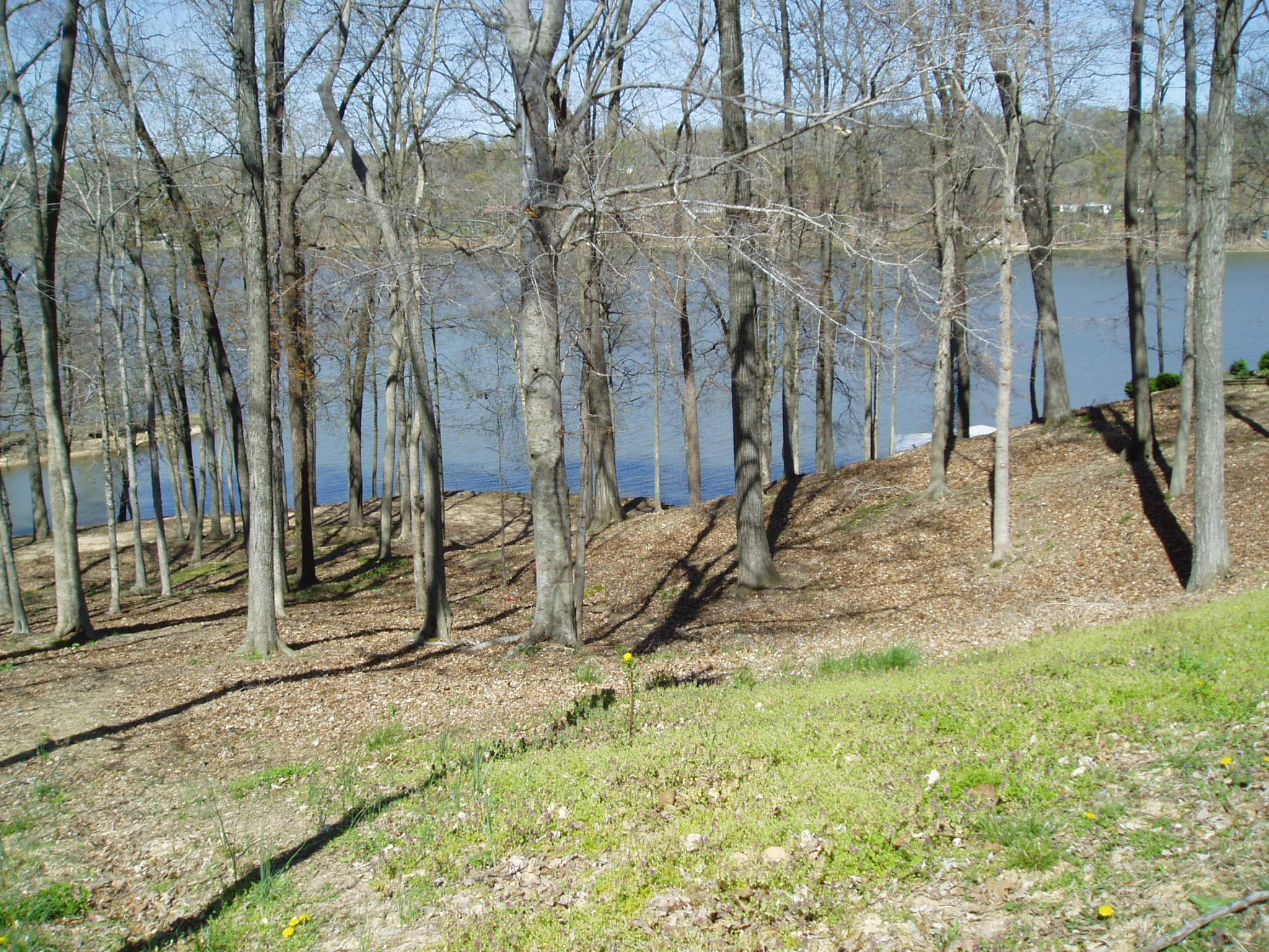 844 Stirling Rd. Property Photo - Camden, TN real estate listing