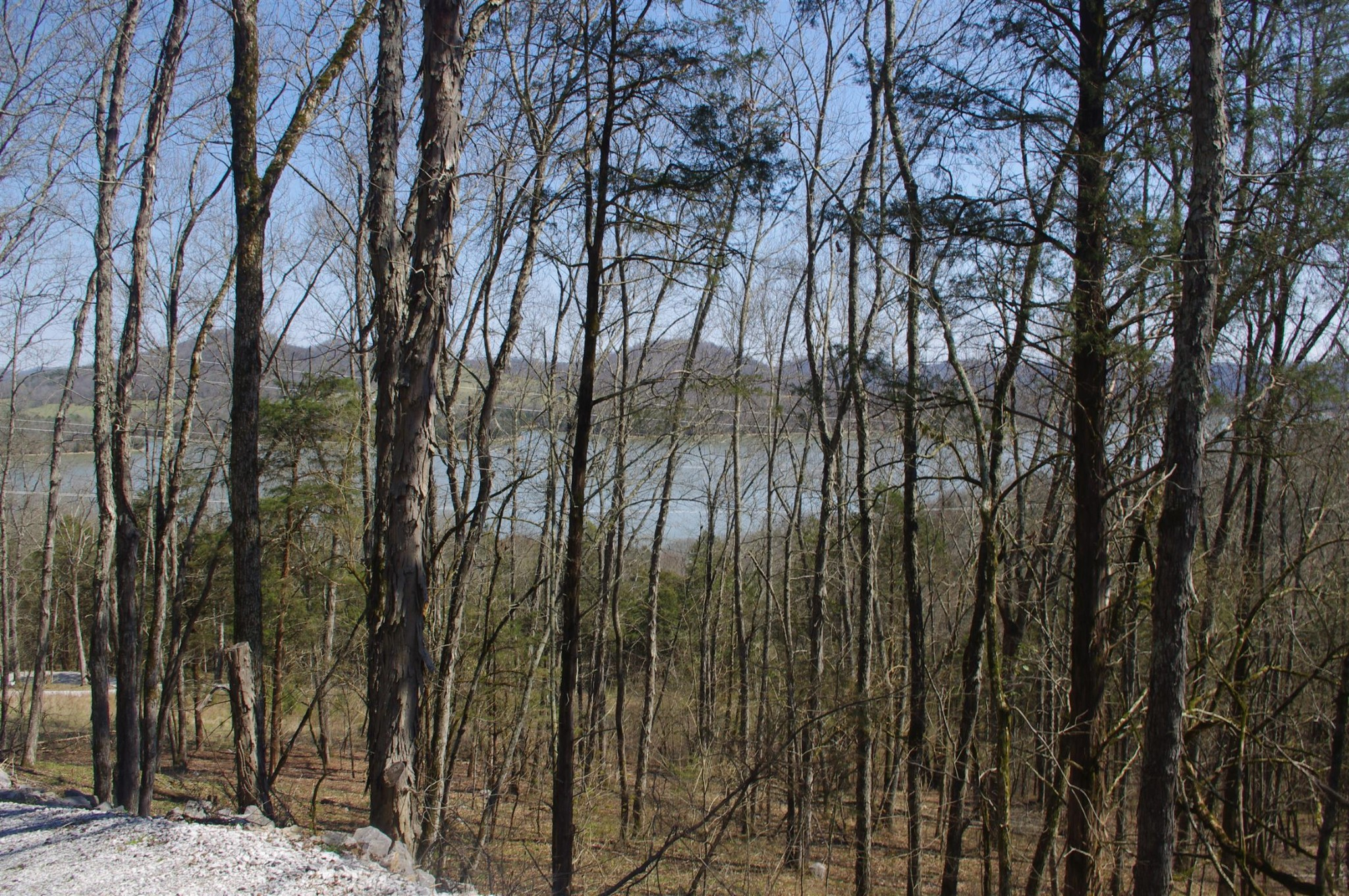 0 Horseshoe Bend Ln Property Photo - Elmwood, TN real estate listing