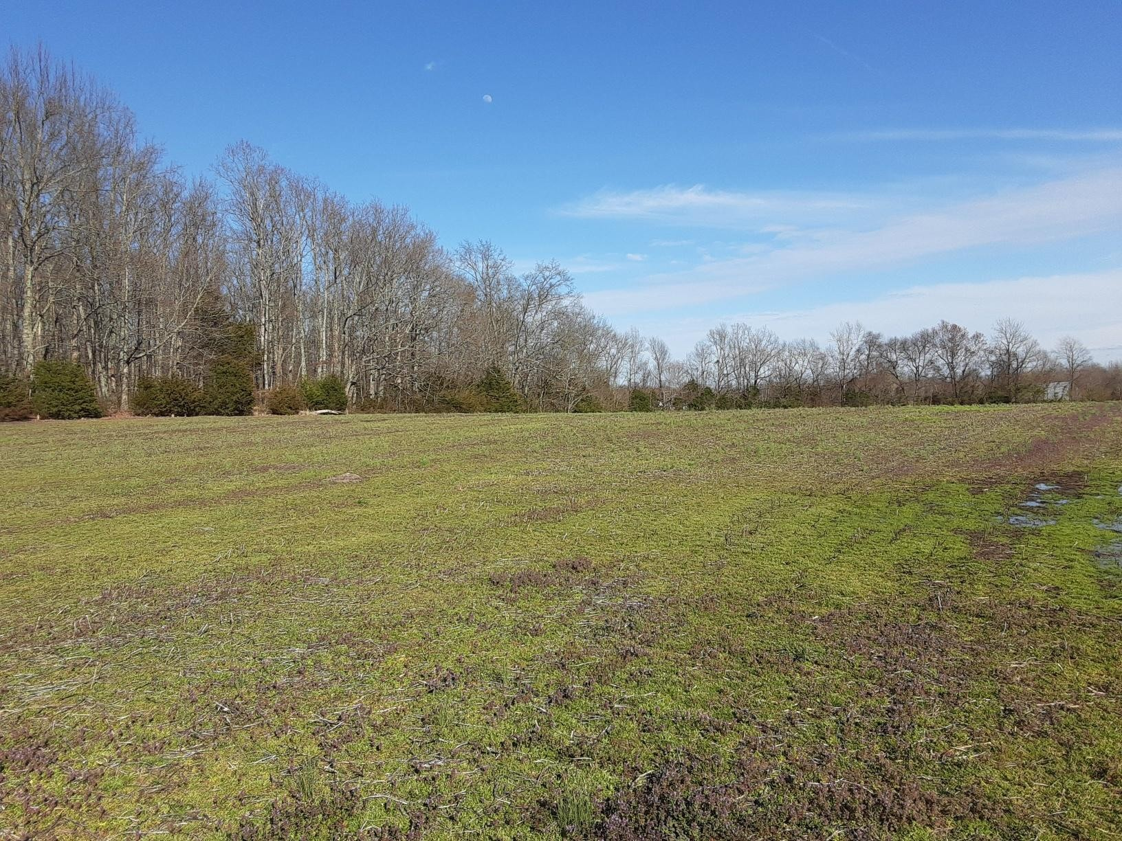 6038 Hollow Springs Rd Property Photo - Bradyville, TN real estate listing