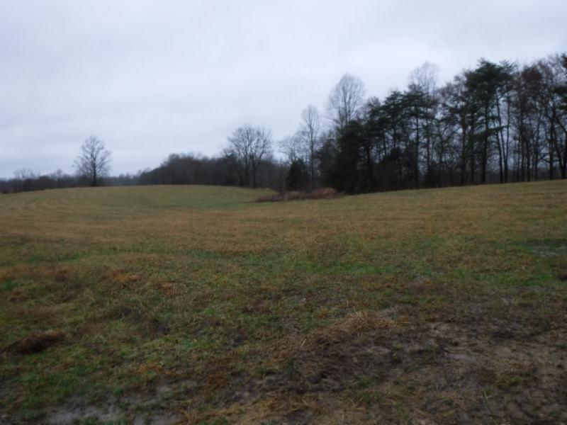 41 .69ac Arrowhead Road Property Photo - Moss, TN real estate listing