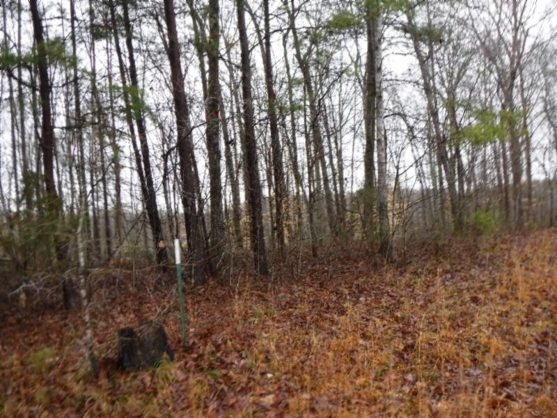 27 .16ac Arrowhead Road Property Photo - Moss, TN real estate listing