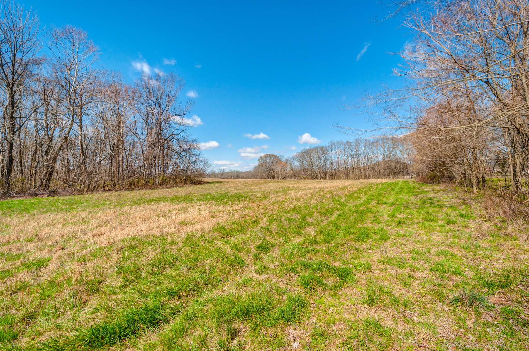 0 West Harpeth Property Photo - Franklin, TN real estate listing