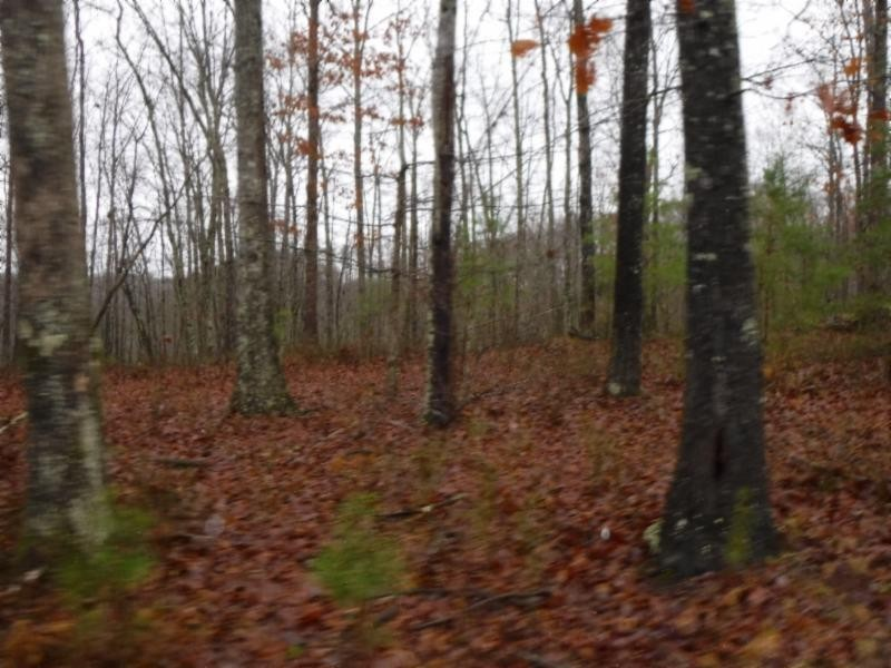 5 .02ac Arrowhead Road Property Photo - Moss, TN real estate listing