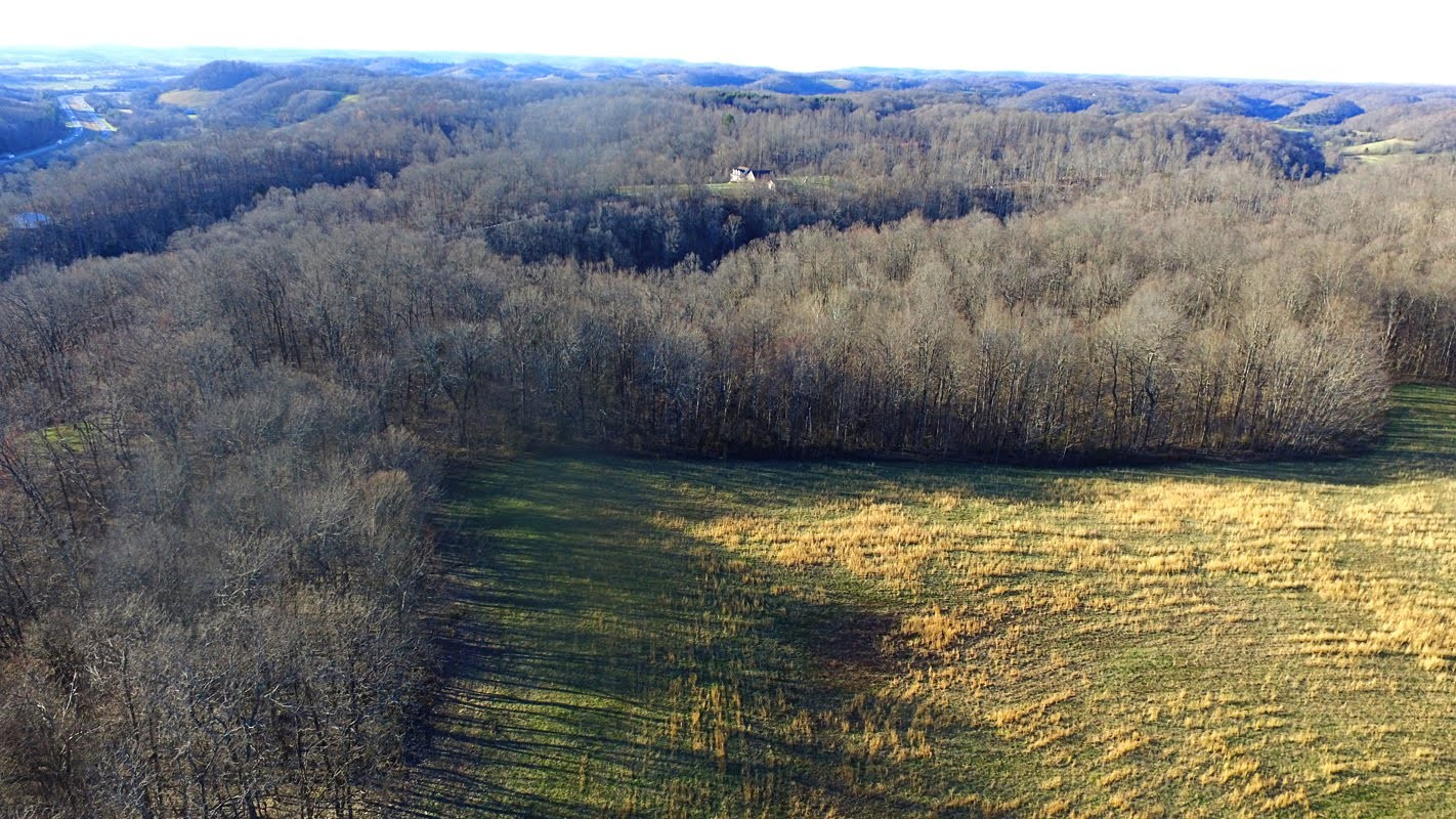 0 Panhandle Road Lot 2 Property Photo - Wartrace, TN real estate listing
