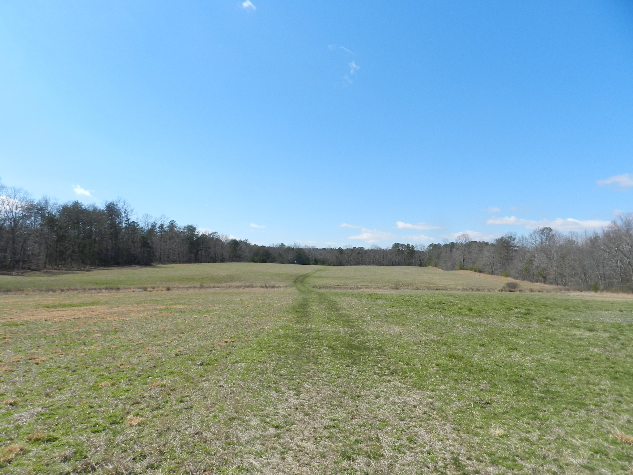 0 SR 56 Property Photo - Coalmont, TN real estate listing