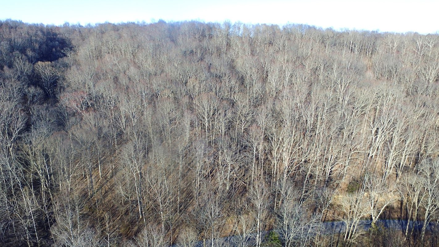 0 Panhandle Road Lot 5 Property Photo - Wartrace, TN real estate listing