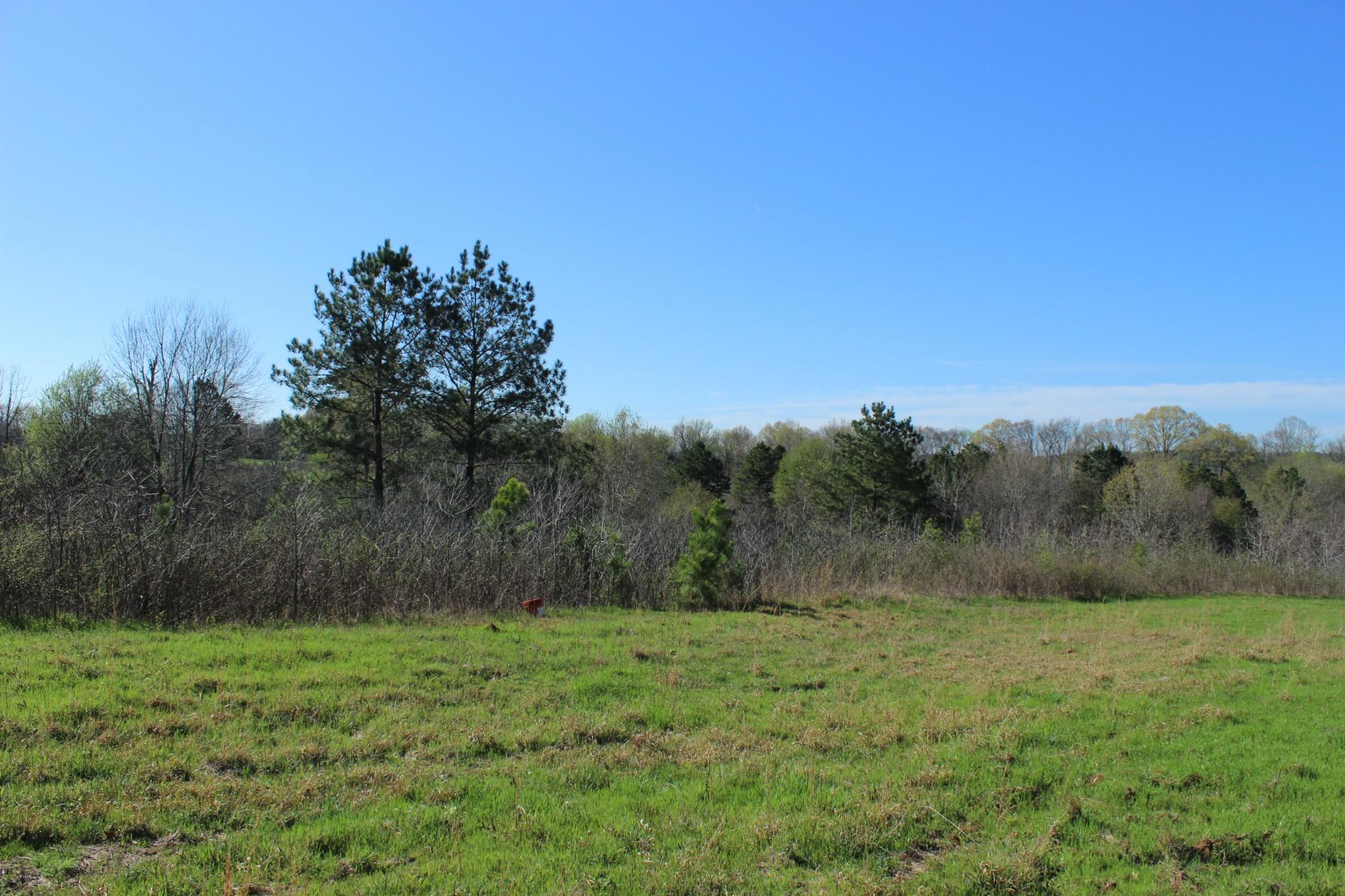 1 Bottom View Cv, Savannah, TN 38372 - Savannah, TN real estate listing