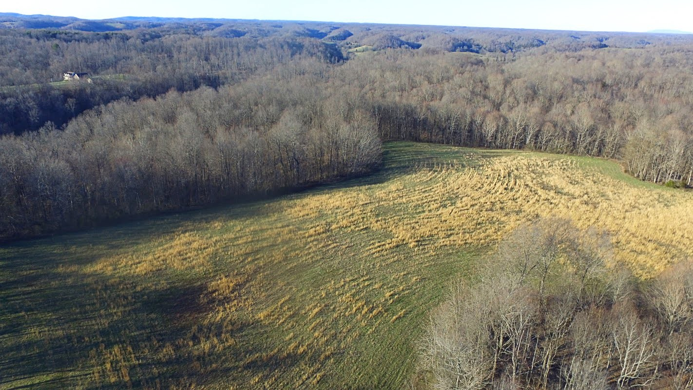 0 Panhandle Rd Property Photo - Wartrace, TN real estate listing