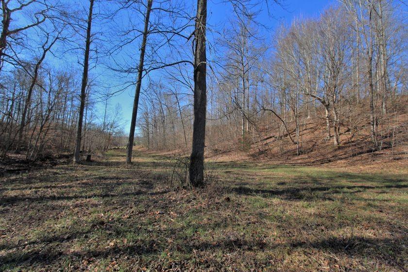 0 Dog Creek Rd Property Photo - Primm Springs, TN real estate listing