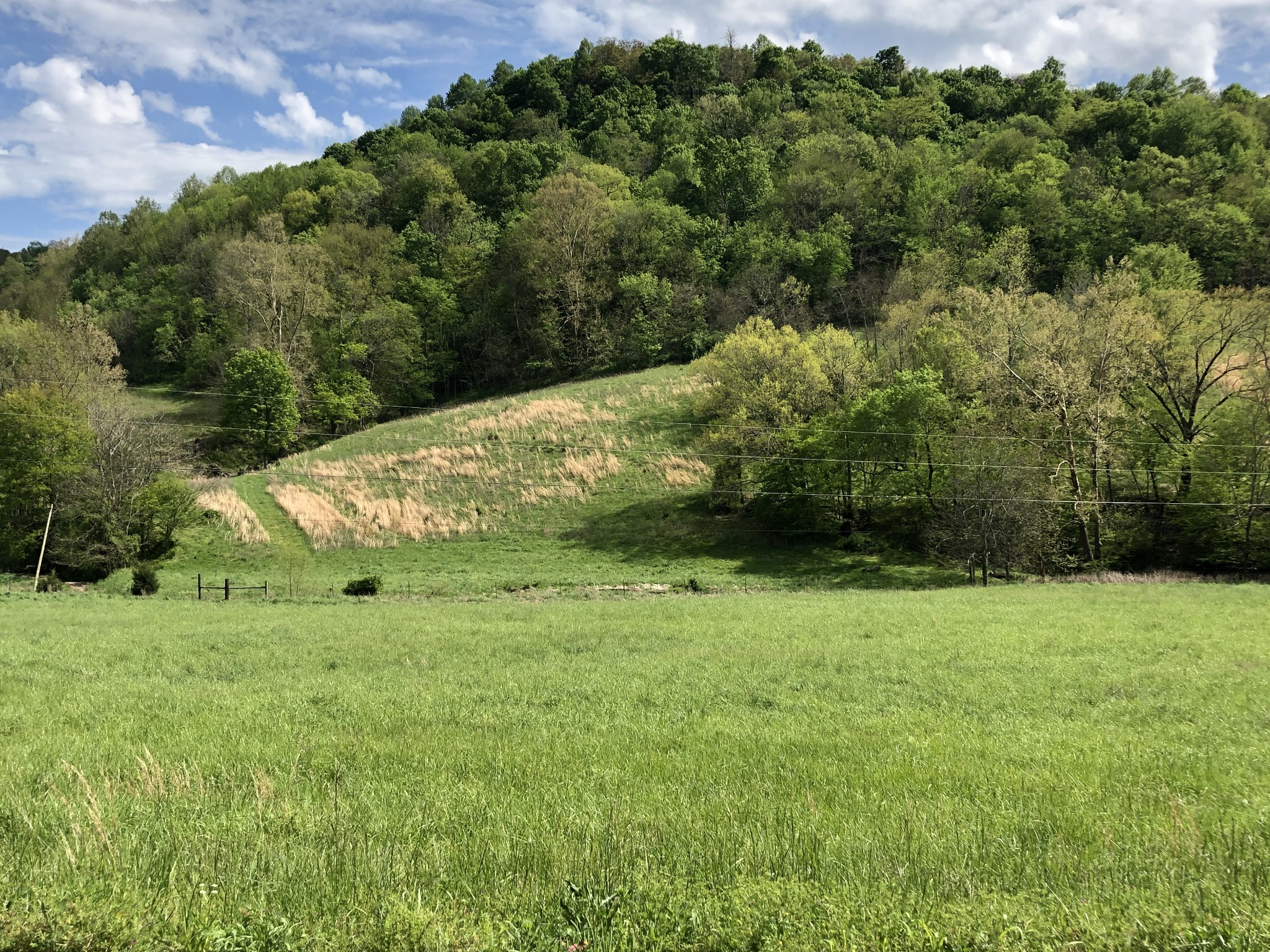 0 Golden Hollow RD Property Photo - Dixon Springs, TN real estate listing