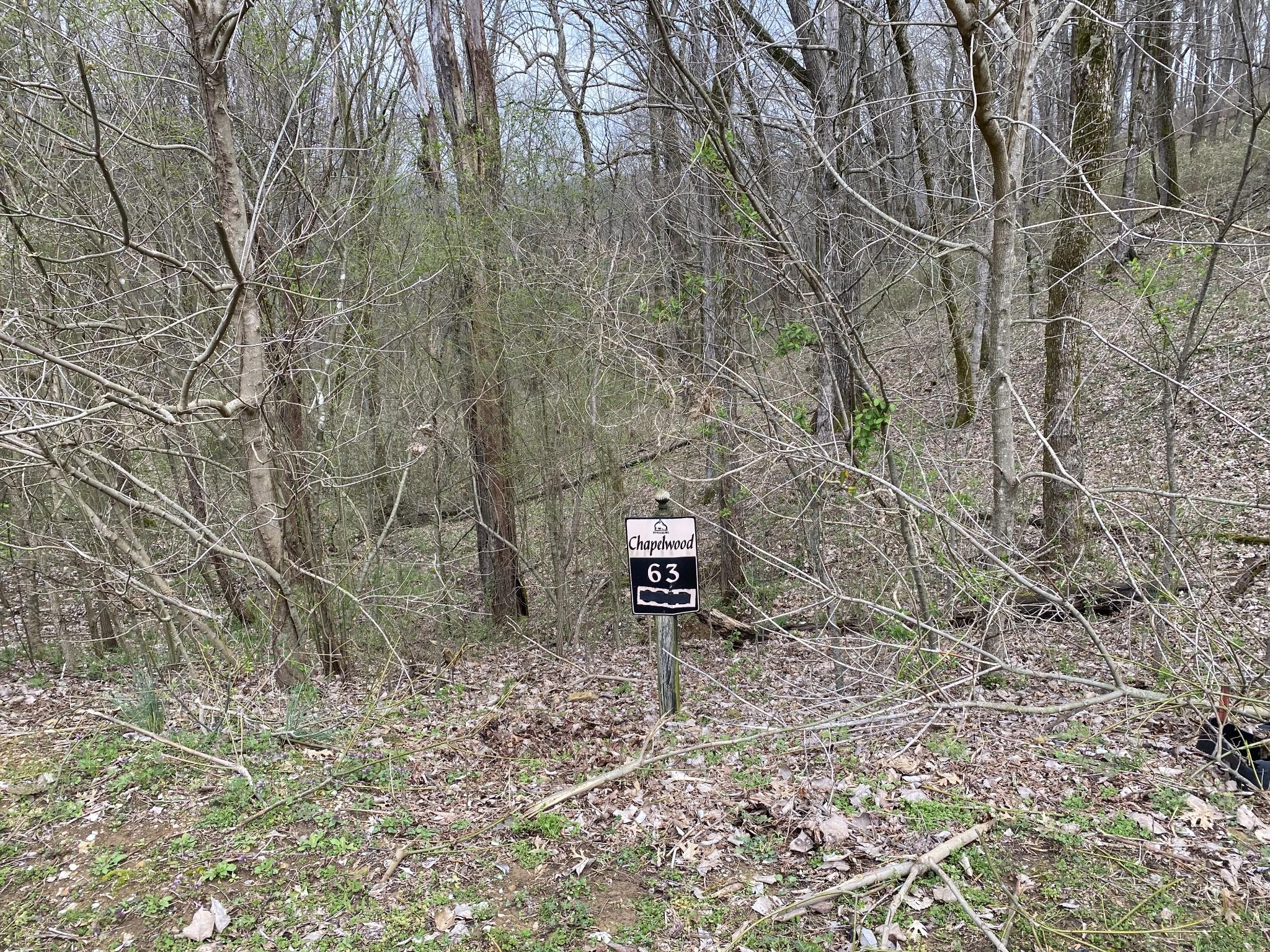 0 Nadia Lane Property Photo - Smithville, TN real estate listing