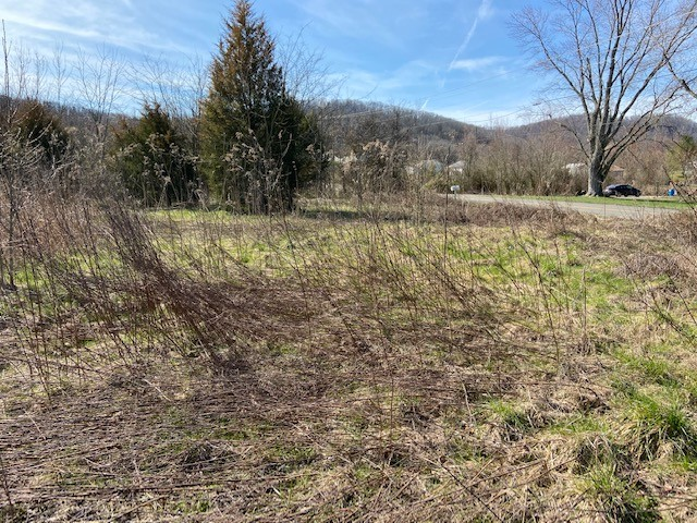 0 Piedmont Road Property Photo - New Market, TN real estate listing